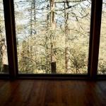 La salle de méditation, et ses mélèzes